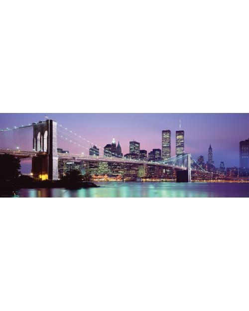 CPP20153 New York Skyline