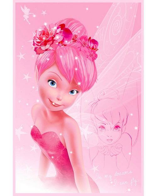 PP33602 Disney Fairies...