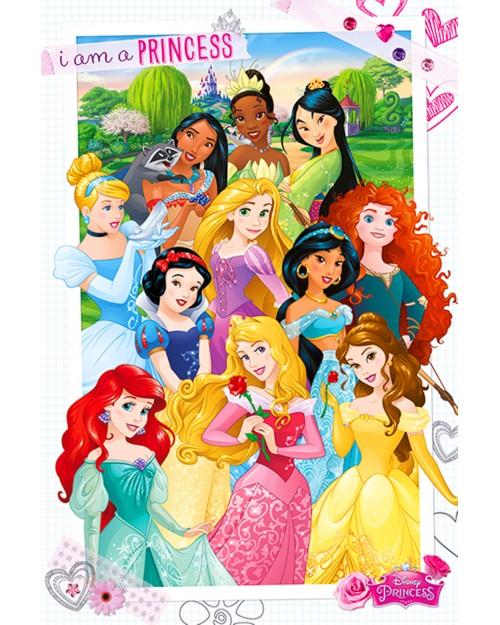 PP33604 Disney Princess (I...