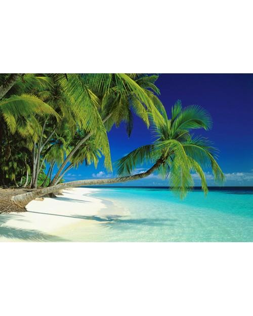 PP31381 Maldives Beach