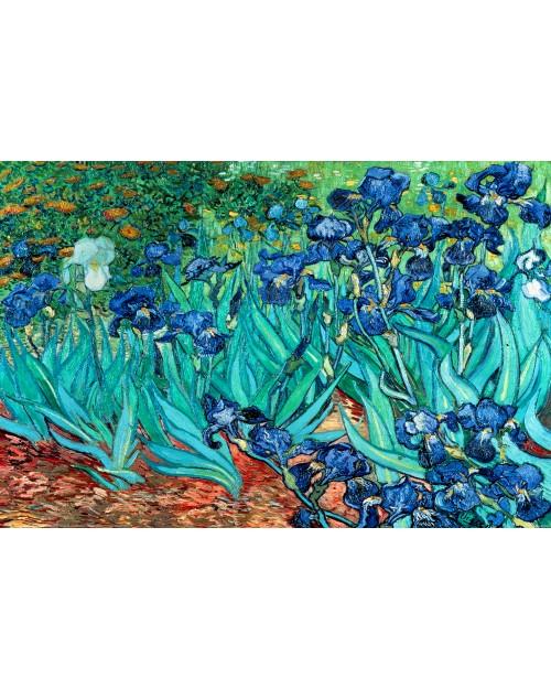 PP34840 Van Gogh (Les Irises)